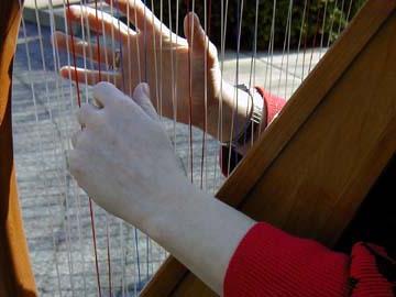 Harping Hands